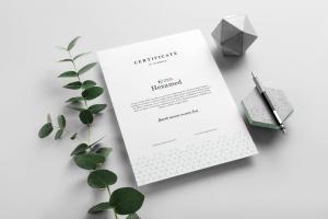 六边形图形设计品牌VI视觉设计效果图样机套件v2 Hexamed Branding Mockup插图2