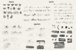水彩花卉PS印章画笔笔刷 Floral Watercolor PS Stamp Brushes插图(8)