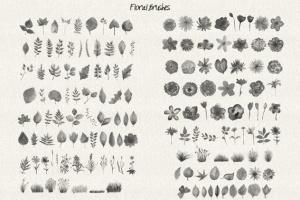 水彩花卉PS印章画笔笔刷 Floral Watercolor PS Stamp Brushes插图5