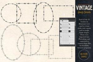 复古装饰元素AI笔刷+PS图形 Ornamental Vintage Design Elements插图4