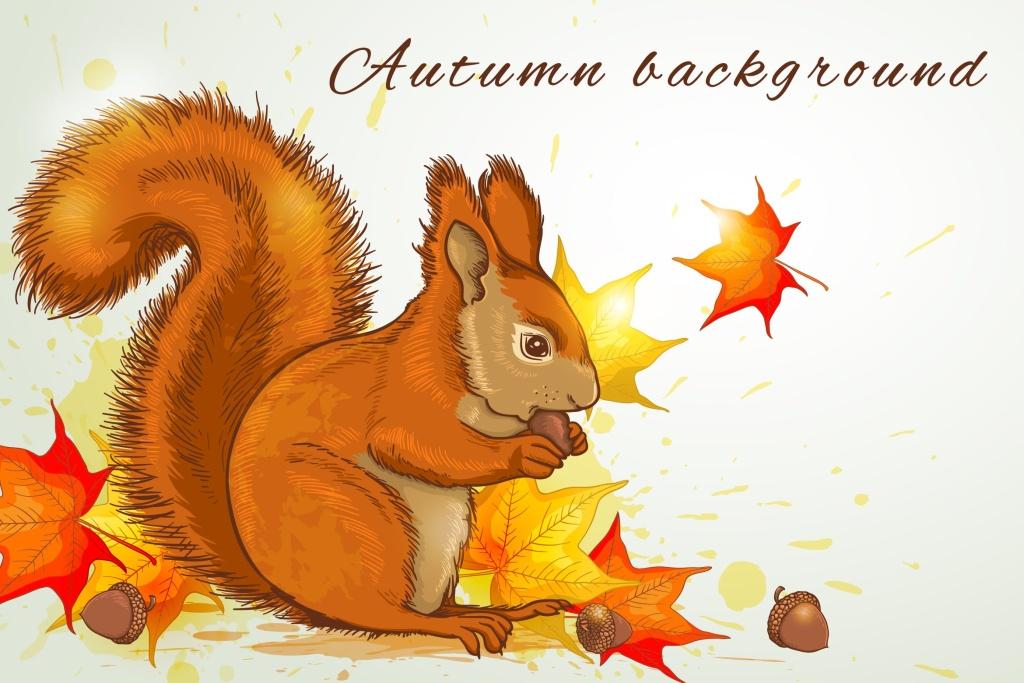 秋天松鼠矢量插画素材 Autumn Background with Squirrel插图