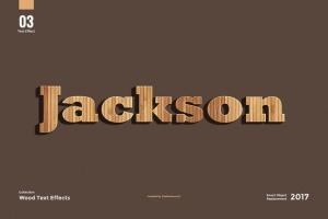 8款超逼真木纹效果PS字体样式 8 Wood Text Effects插图5