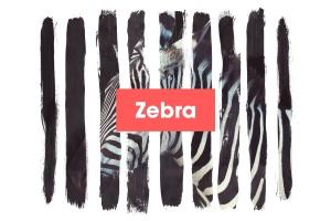 水墨斑马条纹遮罩效果PSD分层模板 Zebra插图1