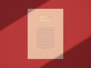 品牌VI设计系统办公用品印刷品套件样机 Stationary Mockup — Set 1插图8