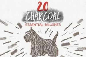 数码绘画大师AI画笔笔刷大合集 Essential Vector Brushes Collection插图3