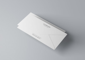 企业信封设计图样机模板 Baronial DL Envelope Mockup插图3