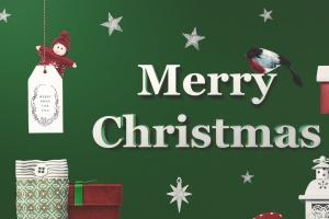 60+圣诞节主题手绘涂鸦花卉元素 Christmas Doodle Floral Elements插图5