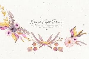 浅色优雅水彩手绘花卉剪贴画PNG素材 Ray of Light Flowers插图6