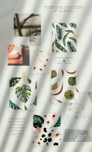 热带植物水彩手绘图案设计素材套装 Tropics & Coral Watercolor Set插图3
