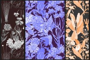 高清复古植物图案背景设计素材 Vintage Botanical Patterns插图2