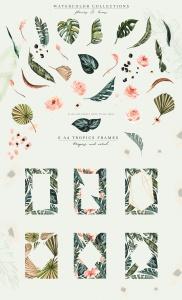 热带植物水彩手绘图案设计素材套装 Tropics & Coral Watercolor Set插图4