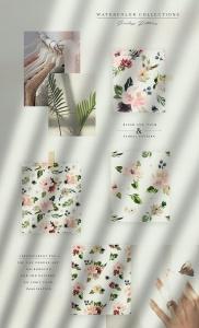 腮红色水彩花卉手绘高清PNG素材 Watercolor Blush & Plum插图2
