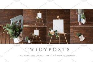 婚礼场景照片样机合集 Ultimate Wedding Stock Photo Bundle插图6