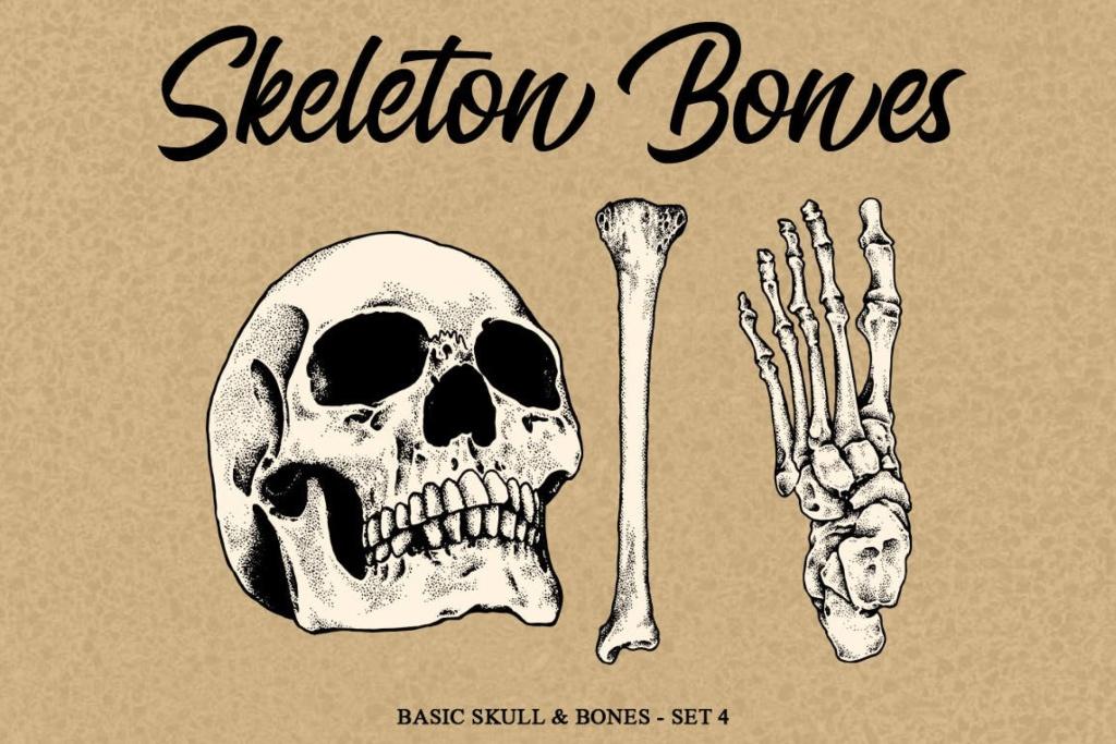 人体骨骼骷髅矢量手绘插画素材v4 Skeleton Bones set 4插图