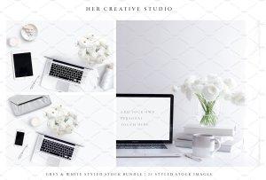 现代简约风格灰白配色场景模板 White & Grey Styled Stock Bundle插图2