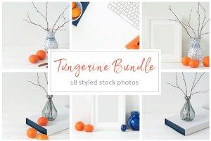 冬天简约风格办公场景背景 Tangerine Winter Bundle插图1
