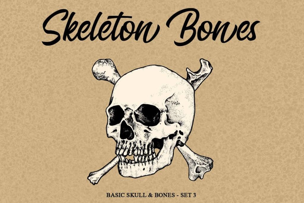 骨骼头骨骷髅矢量手绘插画v3 Skeleton bones set 3插图