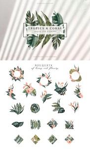 热带植物水彩手绘图案设计素材套装 Tropics & Coral Watercolor Set插图8