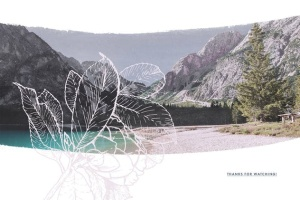 40款水彩图形PS画笔笔刷&矢量花卉插画素材 Cloudy Watercolor Decorations Set插图8