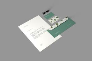 品牌VI体系设计效果图预览样机模板 Branding Stationery Mockups插图2