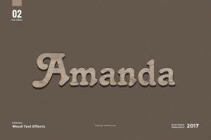 8款超逼真木纹效果PS字体样式 8 Wood Text Effects插图4