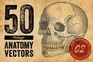 50个老式人体解剖矢量插图 Vintage Anatomy Vectors插图1
