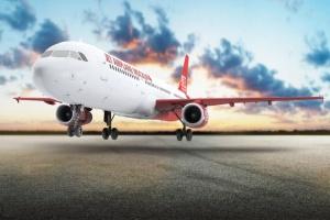 空客A321空中巴士中短程客机样机 Jet Airplane A321 Mock-Up插图2