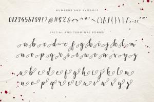 付费手写英文字体 Emellie Script Font插图3