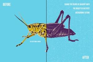 朋克文化DIY印刷品和GIG海报PS图层样式合集 Alternative Printmaker插图8