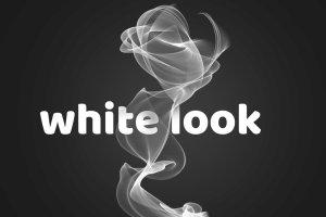 15种抽象逼真的烟雾Photoshop笔刷插图5