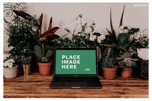 iMac&Macbook办公场景样机 iMac & Macbook on Scenes Mock-ups插图7