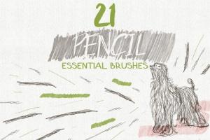 数码绘画大师AI画笔笔刷大合集 Essential Vector Brushes Collection插图5