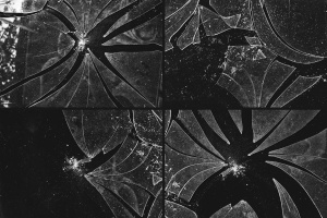 破碎玻璃效果PS图层样式PSD分层模板 Broken Glass Texture Mockup插图5