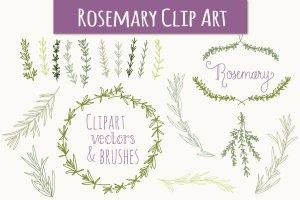 婚礼请柬迷迭香手绘剪贴画及矢量图  Rosemary Clip Art & Vectors插图1