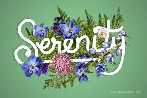 花卉版画布局图层样式 FlowerType for Photoshop插图5