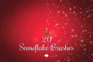 20款圣诞节、冬季雪花笔刷合集  20 Snowflake brushes插图1