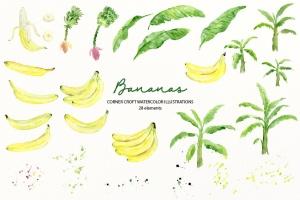 水彩香蕉&香蕉树手绘插画PNG素材 Watercolor Banana Illustration插图2