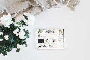 插画艺术背景平板电脑iPad样机 Stock Photo Mockup | Landscape iPad插图1