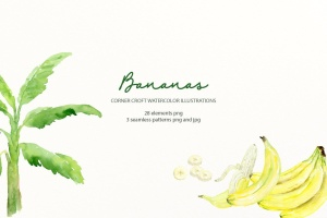 水彩香蕉&香蕉树手绘插画PNG素材 Watercolor Banana Illustration插图5