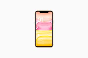 全新iPhone 11手机屏幕界面演示样机模板[PSD格式]插图6
