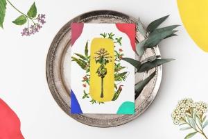 45款植物水彩手绘插画PNG素材 Dryad – Botanical Illustrations插图8