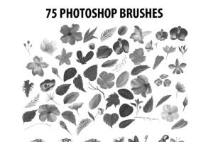75款水彩手绘数码绘画PS笔刷合集 75 Photoshop Brushes Watercolor Collection插图2
