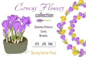 春天藏红花水彩插画设计素材 Crocus. Spring Flowers collection插图1