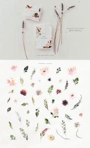 腮红色水彩花卉手绘高清PNG素材 Watercolor Blush & Plum插图4