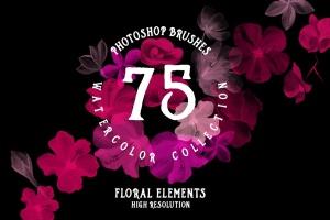 75款水彩手绘数码绘画PS笔刷合集 75 Photoshop Brushes Watercolor Collection插图1