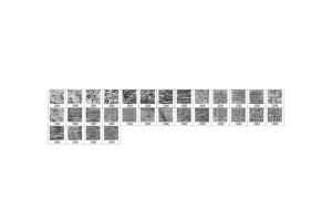 30款油漆手工纸张纹理肌理PS笔刷v1 30 Paint Texture Photoshop Brushes Vol. 1插图2