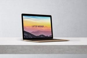 笔记本电脑屏幕演示样机模板 14×9 Laptop Screen Mock-Up – Gold插图7
