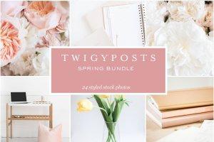 小清新女性主题场景背景照片集 Spring Styled Stock Photos插图3