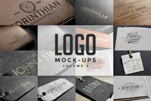 时尚高端的高品质logo标志标签挂签吊牌VI样机展示模型mockups插图1