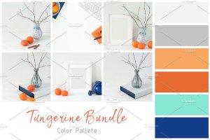 冬天简约风格办公场景背景 Tangerine Winter Bundle插图5